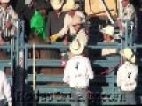 Reno Rodeo Sponsored By Coca-Cola & Les Schwab Tires Caught Secretly Shocking Horses
