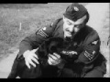 The PC Edited Excerpts From The Dambusters Film A Dog Called