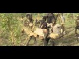 Africa Addio Hunting Elephants And Hippos