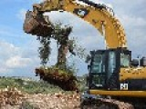 Israel Destroys Over 1,300 Olive Trees In Hebron Village
