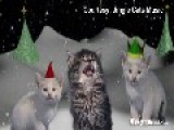 A Music Post Starring The Jingle Cats