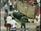 Ancient Old Video From Ogrish.com Apparently Of People Being Gored By Bulls