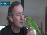 Amazing Parrot. Just Like A Dog!