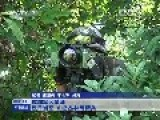 Chinese Land Force Training In Jungle Warfare Tactics Near Border To Vienam