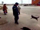 Cop Breaks Up Arguing Cats