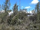 Damage Caused By Emma Lake Tornado