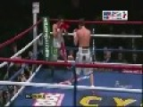 Funny Paki Boxer Gets Knocked Out