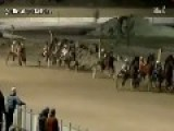 Gay Couple Caught Having Sex At A Horse Race