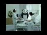 Google Panda Updates Vs Our Solution