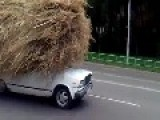 Hay For Horses The Russian Way