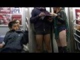 How To Thousands Of New Yorkers Drop Their Pants On The Subway