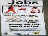 Jobs For Ho's