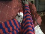 My Cat Mr. Boy.....Sock Monkey Onesey