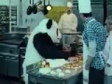 Never Say NO ! To Panda