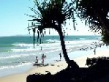 Perfect But Small Waves At First Point Noosa Heads Australia