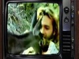 Retro TV The Life And Times Of Grizzly Adams