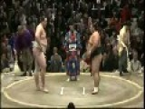 Sumo Wrestler Knocks Out The Referee Cold