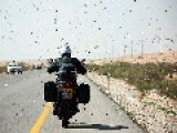 Swarms Of Locusts Arrive From Egypt To Israel