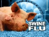 Swine Flu Epidemic In The West Bank