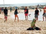 The Bizzare Case Of Group Sex On TA Beach In The Middle Of Day