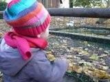 Alice Au Zoo
