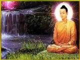 BUDDHA AMRITAM