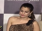 Busty Amisha Patel Shows Her Huge Bosoms At IIJW 2011 Third Day