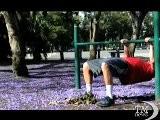 Buenos Aires Tinta Di Blu Per La Fioritura Dalla Jacaranda. In Argentina &egrave Gi&agrave Primavera, Lo Spettacolo Degli Alberi In Fiore