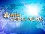 China News February 15, 2011