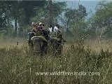 Elephant Safari In Jim Corbett National Park