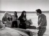 FASTER PUSSYCAT! KILL! KILL! - Russ Meyer - 1965 --- Course