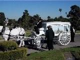 Funerals Memorials White Doves 714-903-6599 OCdoves.com