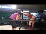 Female Wrestling Quick Scenes