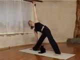 Gatti E Yoga Non Vanno D&#039 Accordo
