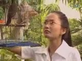 Kinh Van Hoa-13-Bi Mat Ke Trom-P1
