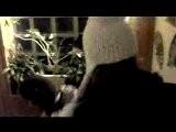 Lipdub Noel2009