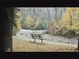 Фото 35..  Нажмите на картинку с обоями природы - осень, чтобы просмотреть ее в...