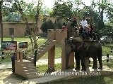 People Riding An Elephant
