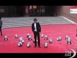 Roma Film Fest, Un Montone E Panda Finti Sul Red Carpet. Animali In Passerella Insieme Alle Star