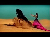Sahara Essence Instrumental Arabic Music