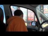 Cute Dog And Asian Ordering Food Through Drive-Thru Taste The Panda