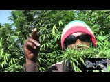 Marlon Asher - Ganja Cowboy OFFICIAL VIDEO By TRU REELZ PROD