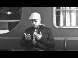 Maher Zain - Insha Allah Arabic | Vocals Only No Music