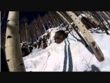 P&F Skiing Face Plant! Epic Laugh Nice Dude