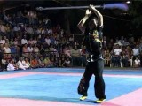 World Champion Wushu Kungfu Show Promotional Trailer