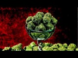 May 2012 - Earth's Strongest Strains