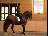 Elegant Dressage Training 3, Anja Beran, DVD Video, Horses