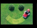 Lawn Care Virginia Beach VA | Coupons | Lanscaping Virginia Beach VA