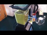 How To Make A Healthy Smoothie - FREE Excellent Tutorial, Step By Step