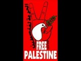 Free Palestine DAM الحرية لفلسطين اغنية راب عربي